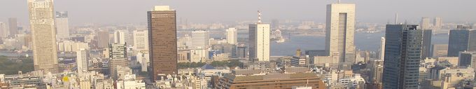 View from TokyoTower.jpg